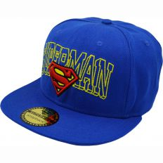 Купить Thehundreds Superman comics blue интернет магазин