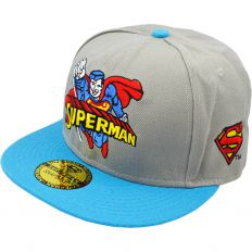 Купить Thehundreds Superman grey / blue 2 интернет магазин