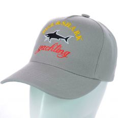 Купить Paul Shark Yachting light-grey / big logo интернет магазин